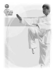 Mendoza 2011 - Maestro Yang Jun