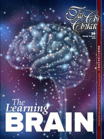 Cerebro que aprende tapa mini